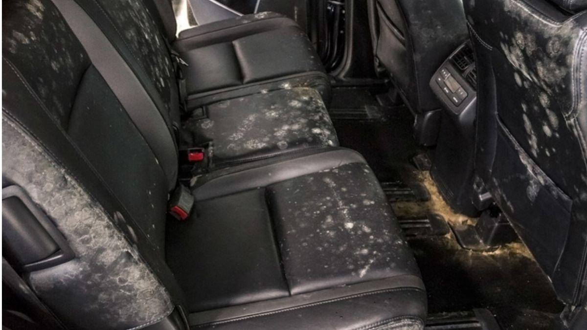 punca aircond kereta berbau Permaidani dan kerusi kereta basah
